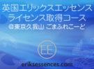 東京開催:エリックスエッセンス ライセンス取得コース